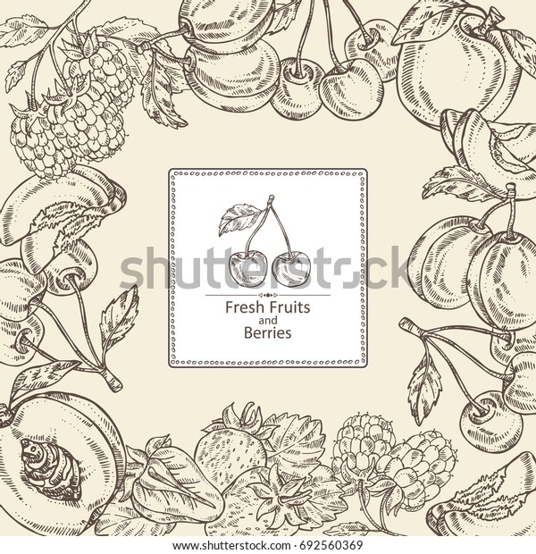 Background with berries and fruits: cherry, plum, peach and strawberry. Vector hand drawn illustration