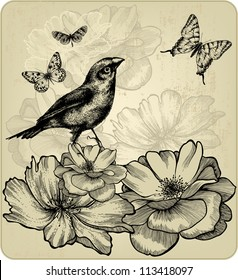 Background with blooming roses, birds and flying butterflies. Vector.