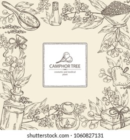 Background with branch of camphor tree, leaves, berries, camphor flowers. Essential oil, soap and bath salt . Cosmetic, perfumery and medical plant. Vector hand drawn illustration.