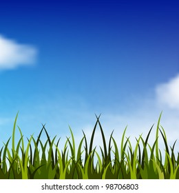 Background with bright blue sky and green grass