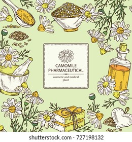 Background with camomile: leaves, seeds, flowers, essential oil, soap and bath salt . Cosmetic, perfumery and medical plant. Vector hand drawn illustration.