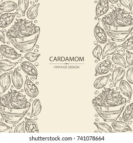 Background with cardamom: seeds and a plate with seeds cardamom. Vector hand drawn illustration