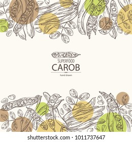Background with carob: branch, carob pods and fruits. Super food. Vector hand drawn illustration