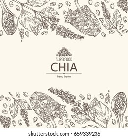 Background with chia: cocktail with chia and blueberries, plant and seeds. Superfood. Vector hand drawn illustration.