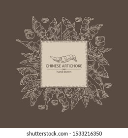 Background with chinese artichoke, tuber of chinese artichoke, leaves and slice. Stachys affinis. Vector hand drawn illustration