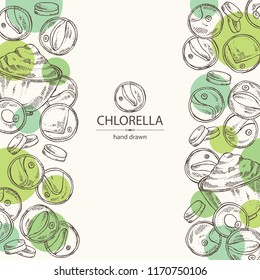 Background with chlorella: chlorella seaweed, powder and tablet. Unicellular green algae. Edible seaweed. Vector hand drawn illustration.