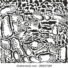 Background with Clouded leopard skins and head