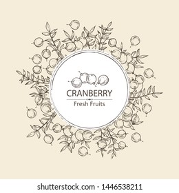 Background with cranberry: berries and cranberry plant.Vector hand drawn illustration.