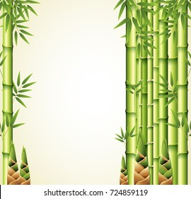 Background design with bamboo stems illustration