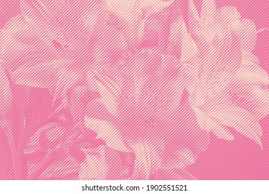 Background with engraved flowers in woodcut style.
