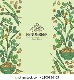 Background with fenugreek: branch of a plant, leaves, flowers and seeds. Vector hand drawn illustration.