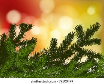 background with fir branches and lights