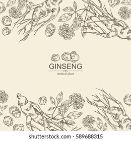 Background with ginseng. Medical plant. hand drawn.