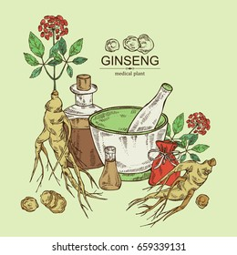 Background with ginseng: ginseng root, plant, bottle, tincture, mortar and pestle. Medical plant. hand drawn.