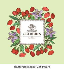 Background with goji: plant, flower and goji berries. Superfood. Vector hand drawn illustration.
