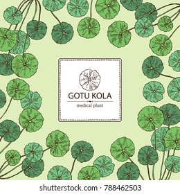 Background with gotu kola: branch of gotu kola. Centella asian. Cosmetic and medical plant. Vector hand drawn illustration.
