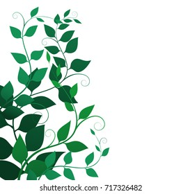 Background with green leaves and curls , vector illustration. Fine branches