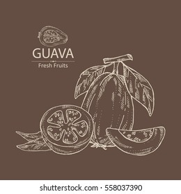 Background with guava and guava slice. hand drawn.