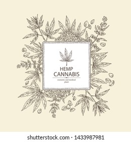 Background with hemp: cannabis seeds and plant. Superfood. Cosmetic and medical plant. Vector hand drawn illustration