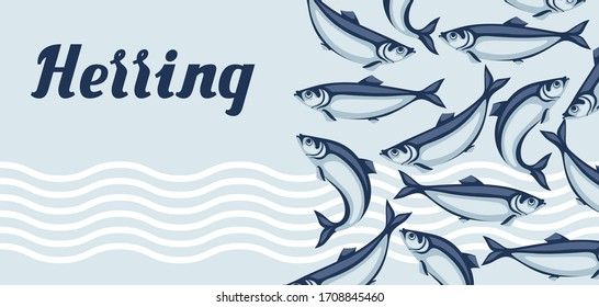 Background with herring fish. Pacific sardine. Seafood illustration.