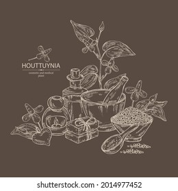 Background with houttuynia: houttuynia flowers and leaves. Houttuynia cordata, Oil, soap and bath salt . Cosmetics and medical plant. Vector hand drawn illustration