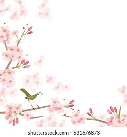 Background illustration of Cherry blossoms and bird