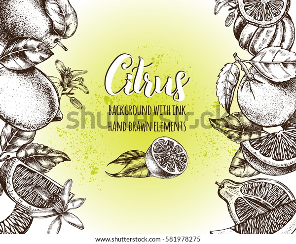 Background with Ink hand drawn citrus fruits. Template for design leaflets, labels, banners, signboard. Vector illustration.