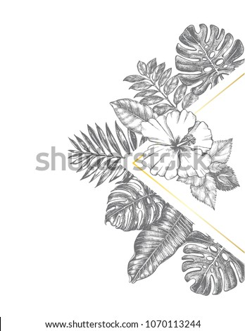 Background Ink Hand Drawn Hibiscus Flower Stock Vector Royalty Free