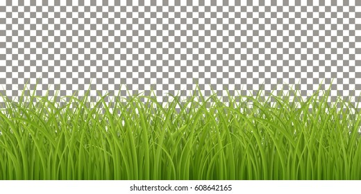 Background with isolated fresh green grass, spring or summer realistic vector background, Eps 10 contains transparency.