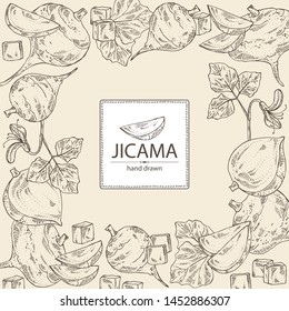 Background with jicama: tuber of jicama, leaves, flower and slice. Pachyrhizus erosus. Vector hand drawn illustration.