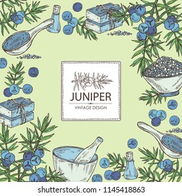 Background with juniper, berries juniper, essential oil, soap, bath salt and mortar and pestle. Cosmetic, perfumery and medical plant. Vector hand drawn illustration
