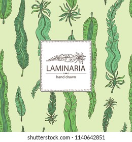 Background with laminaria: laminaria seaweed, sea kale. Brown algae. Edible seaweed. Vector hand drawn illustration.