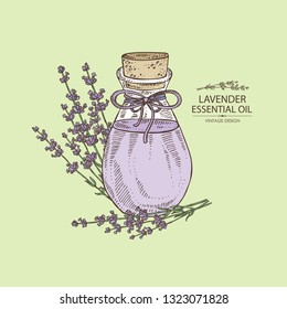Background with lavender and bottle of lavender essential oil. Cosmetic, perfumery and medical plant. Vector hand drawn