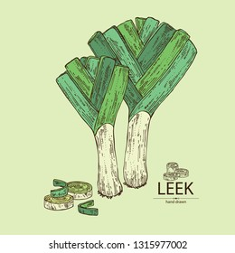 Background with leek: full leek and slices. Vector hand drawn illustration.