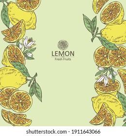 Background with lemon: fruts, lemon flower and lemon slice. Vector hand drawn illustration
