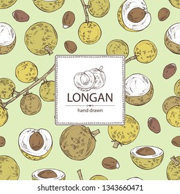 Background with longan: fruit and longan slice. Vector hand drawn illustration.