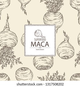 Background with Maca Peruvian. Superfood. Vector hand drawn illustration