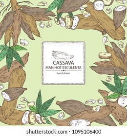 Background with manihot esculenta: cassava root, tuber, manihot slice and leaves. Vector hand drawn illustration.