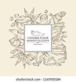 Background with manihot esculenta: cassava root, tuber, manihot slice, bag with flour and leaves. Vector hand drawn illustration.