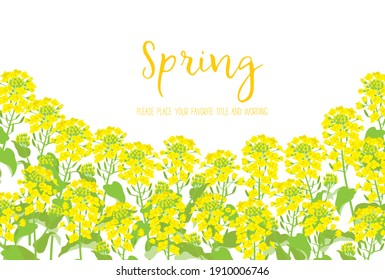 Background material of rape blossoms with the image of spring - Shutterstock ID 1910006746