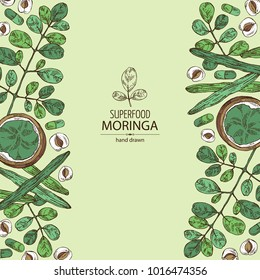 Background with moringa: plant, leaves, pill and powder of moringa. Super food. Vector hand drawn illustration.