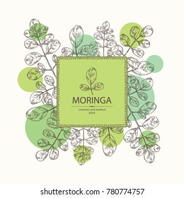 Background with moringa: plant and leaves. Super food. Vector hand drawn illustration.