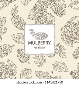 Background with mulberry: berries and leaves. Vector hand drawn illustration