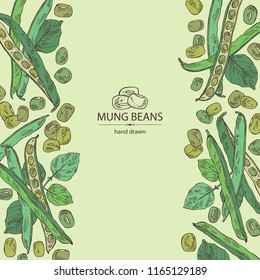 Background with mung beans: leaf, plant, pod and seed of mung beans. Vector hand drawn illustration