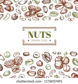 Background with nuts. Cashew and walnut, pistachio and hazelnut organic food vector poster template. Illustration of pistachio and cashew, organic almond and hazelnut