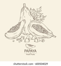 Pictures Of Papaya To Draw