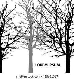 Background Park trees silhouette. Vector