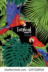 Background, party invitation,  cover with text box with tropical plants, flowers and birds.  Vector illustration. Isolated on black background.