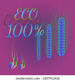 Background pattern nature multicolor eco spica kit.