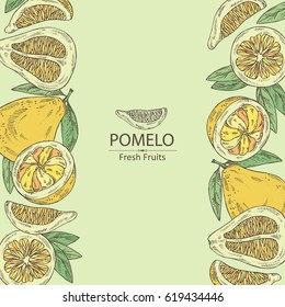 Background with pomelo and pomelo slice. hand drawn